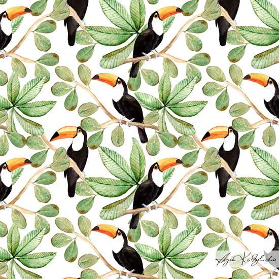 agnieszka-kobylinska_amazing-toucans_lo-res